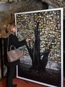 The Soul Trees Origins - Installation Participative